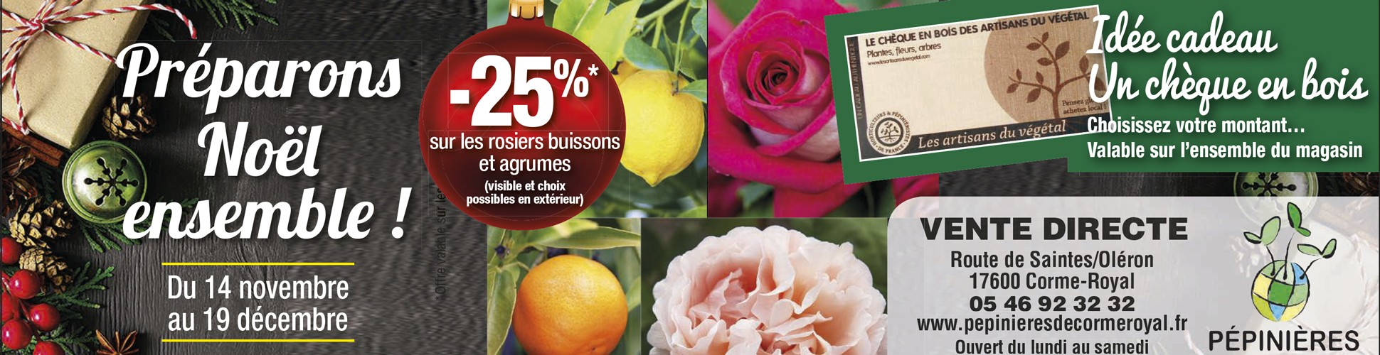 Promo Rosier buisson agrumes