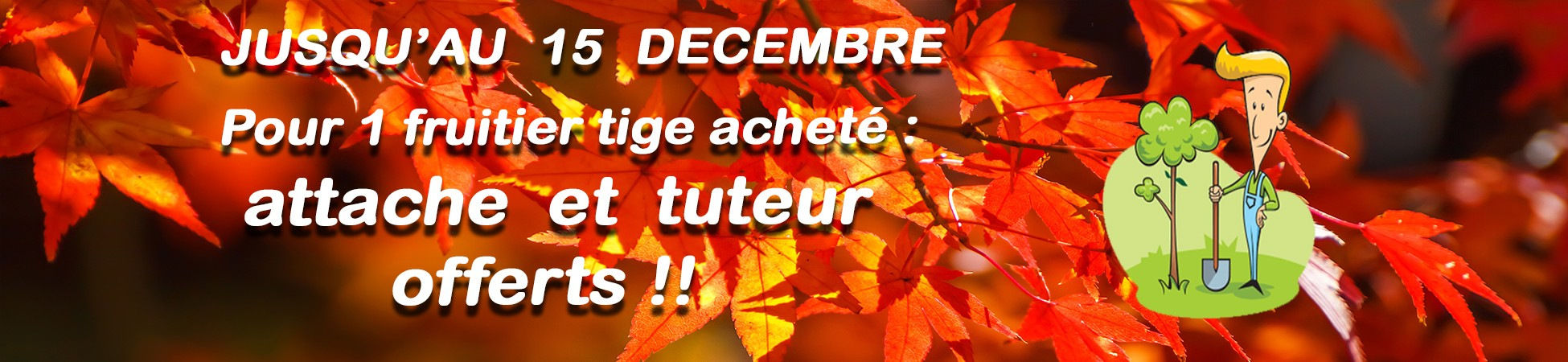 Offre fruitiers automne 2018